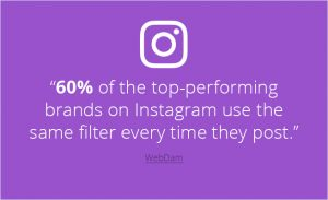 IG Filters Rate