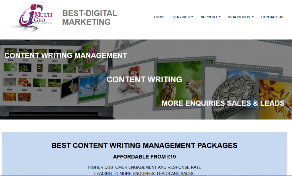 Content Writing Management