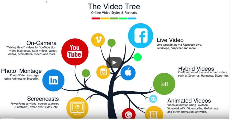 Embed Videos