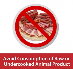 Corona - Avoid Raw or Undercooked Animal Products
