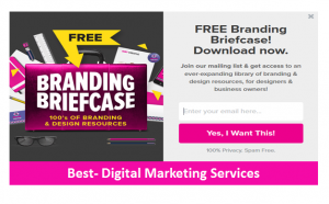 Best-Digital Marketing Services Content Marketing E-book example