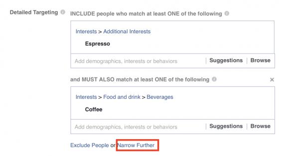 FB Narrowing down Target Audience