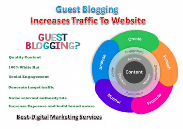 Guest Blogging Drives traffic to website