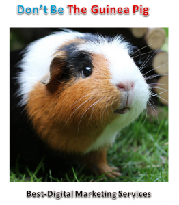Don't Be The Guinea Pig