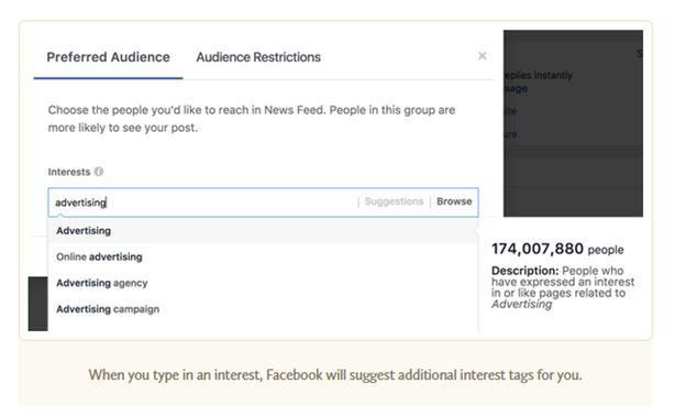 facebook-preferred-audience-example