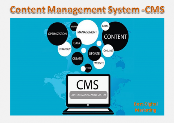 Content Management System - CMS