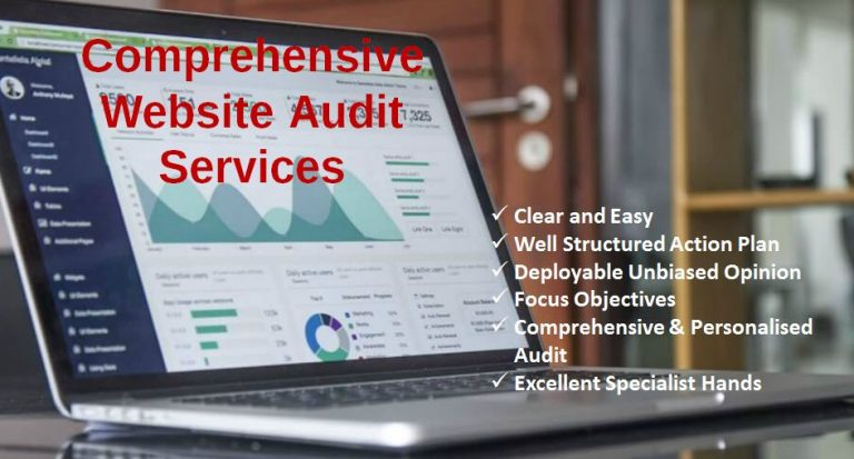 website-audit-services-agency-company