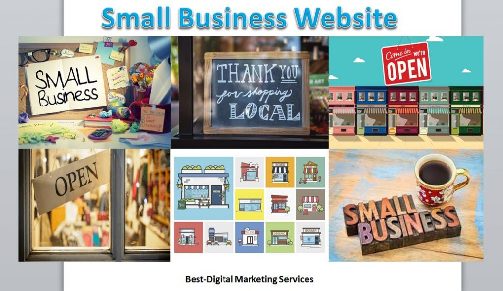 professionnl business website package